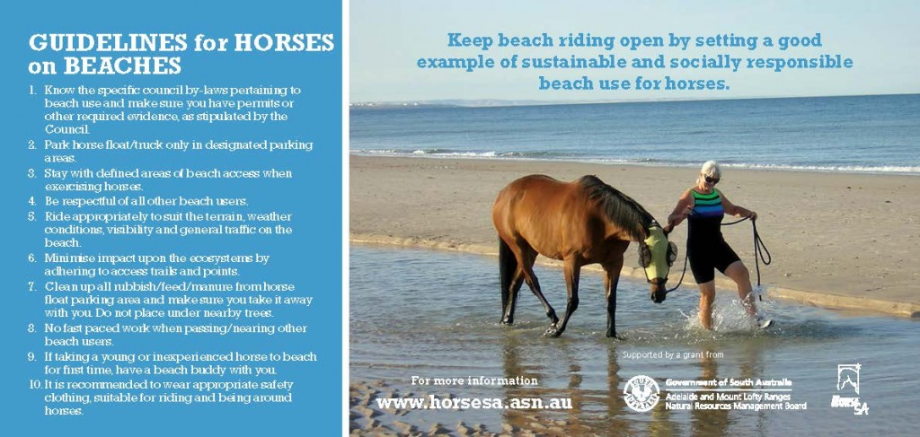 Guidelines for Horses on Beaches