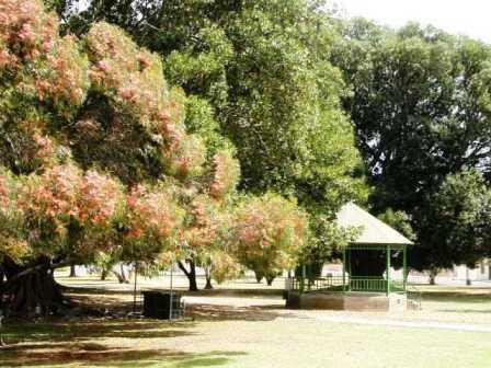 Moonta Park